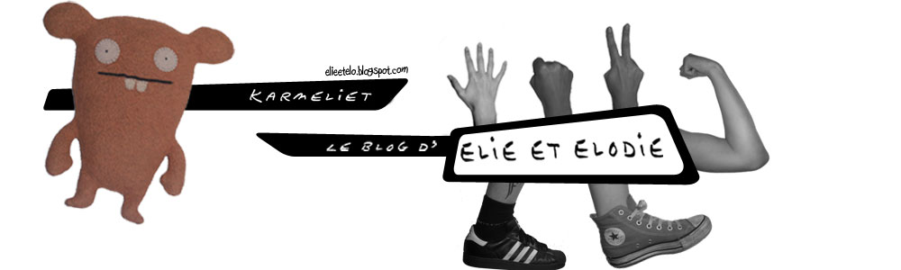 Karmeliet : le blog d'Elie et Elodie