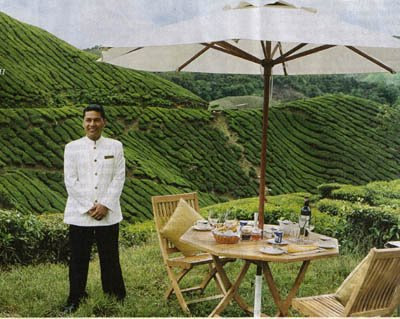 High Tea in Malaysia: Tea tourism attracts travelers to the Cameron Highlands Resort, where classic tea service is provided right on the plantation grounds.