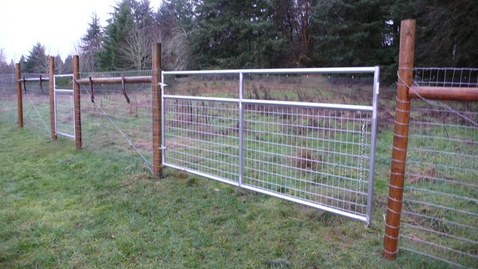 The Reluctant Homesteaders: The Fence is Done!