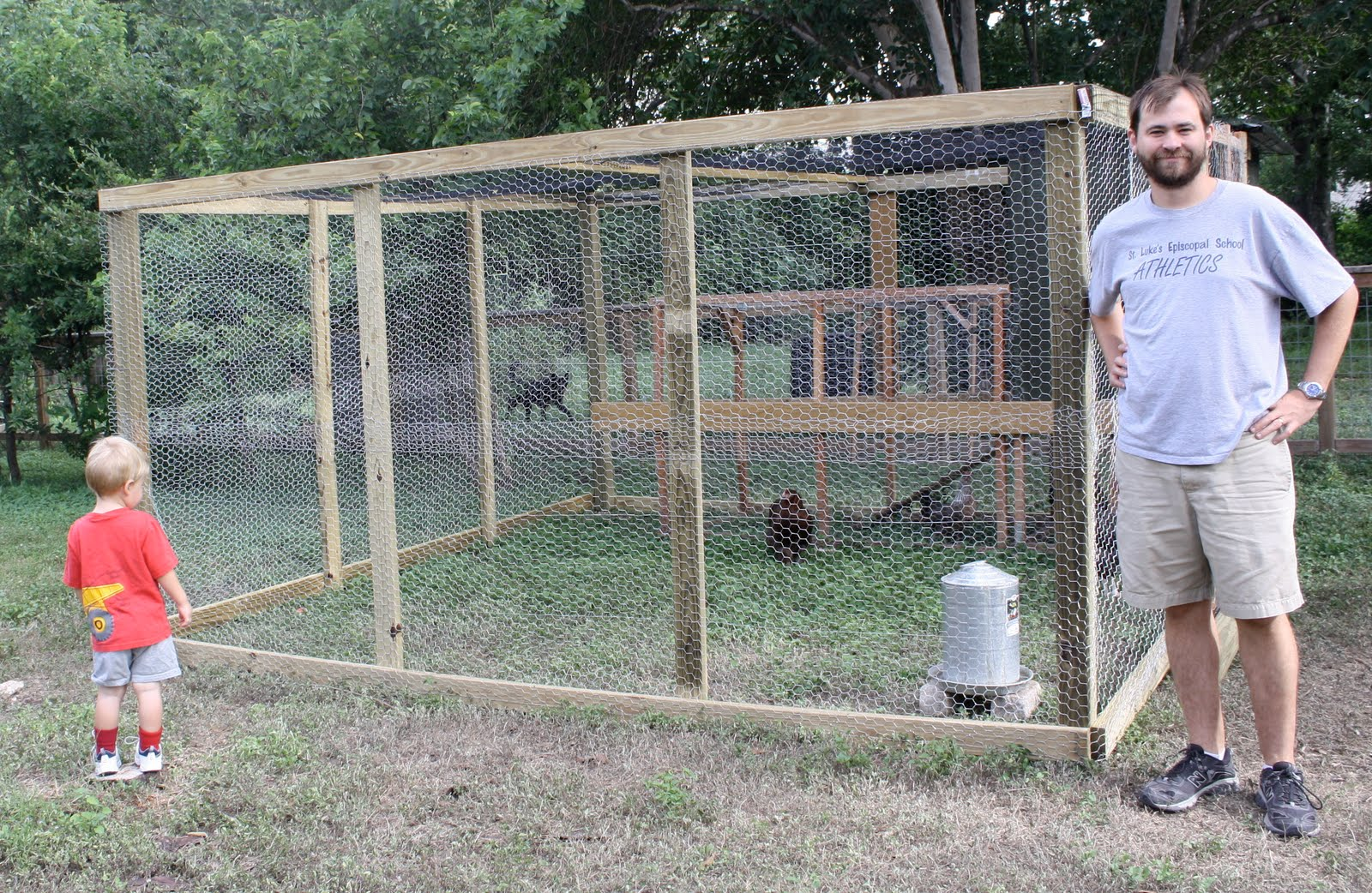 Green eggs and a plan what we made chicken run expansion for Chicken enclosure ideas