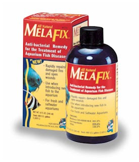 Melafix All-Natural Medication For Treatment Of Cloudy Eye on Fish