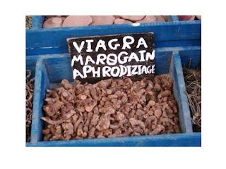 Moroccan viagra