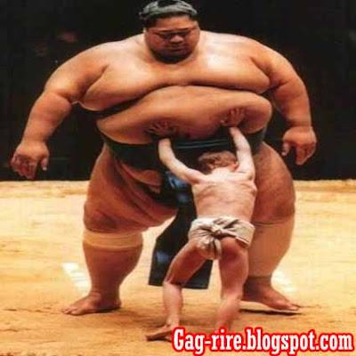 sumou sumo combat art sumo