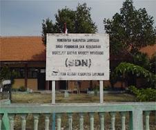 SDN Mendogo