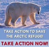 Save Arctic Refuge