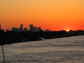 New Orleans from the River at Sunset