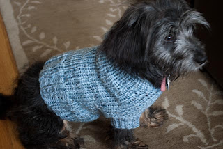 free crochet dog sweater patterns free crochet dog sweater