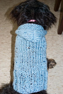 Knitting Patterns For Dachshund Dog Sweaters :   DACHSHUND SWEATER PATTERNS