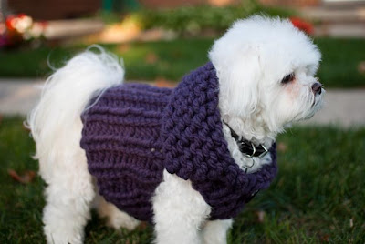 Free Knitted Dog Coat Patterns : Ribbed Sweater Dog Vest Free Knitting Pattern from the Pets Free Knitting Pat...