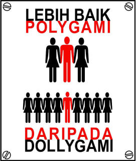 an introduction to the issue of the practice of consecutive polygamy Polygamy has existed in all over the  there were many issues of property ownership  overall the polygamy in africa is a very common practice that you are.