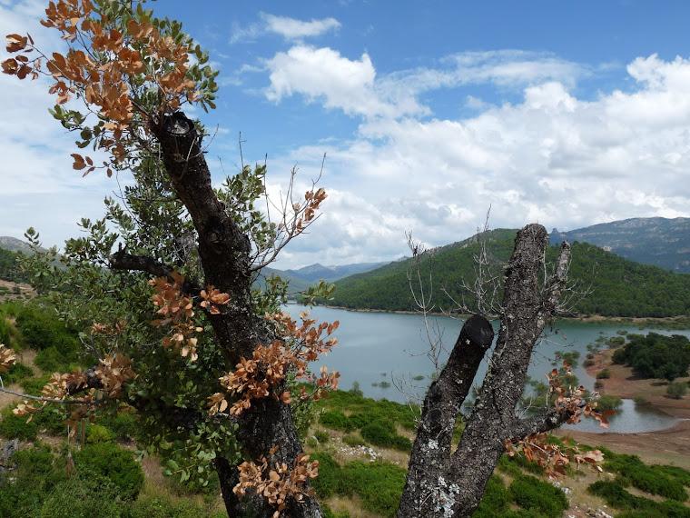 Sierra de Cazorla y Segura (Jaen)
