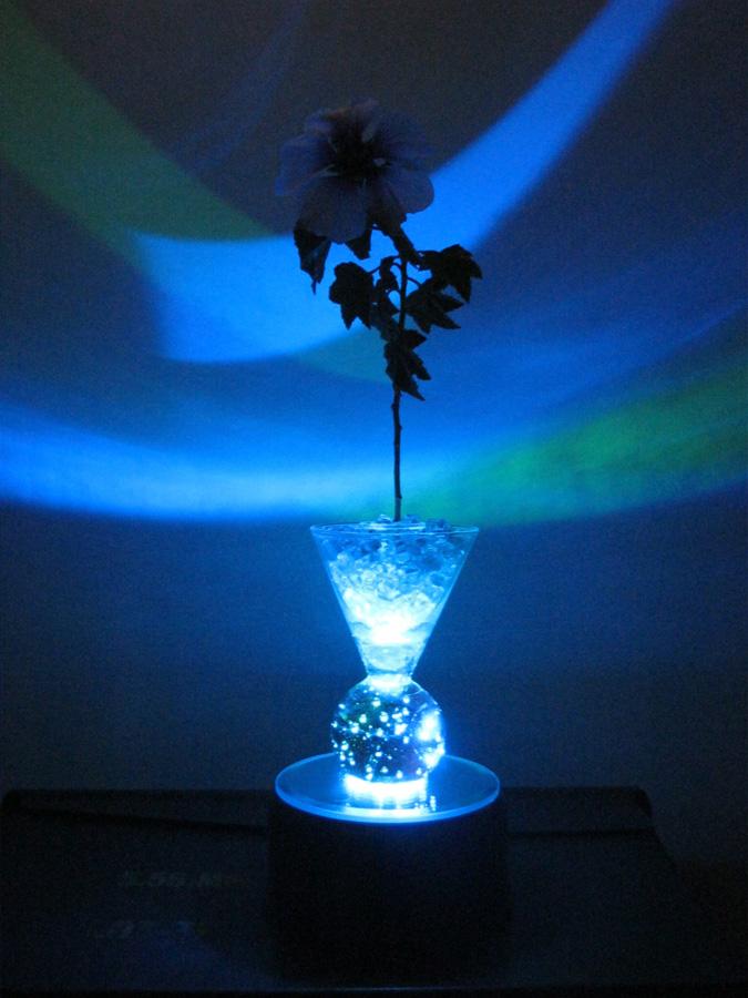 Sweater Surgery Illuminated Broken Windshield Glass Vase