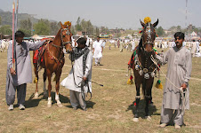 Horse race during Mela