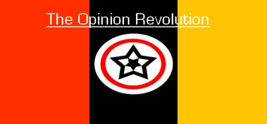 The Opinion Revolution