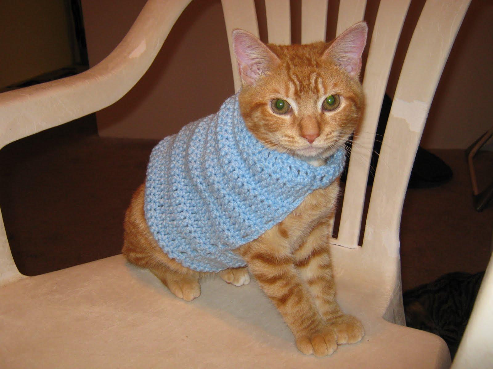Cat Sweater Pattern Simple Design Ideas