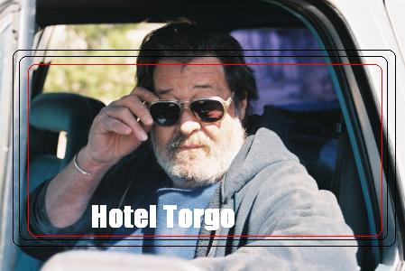 Hotel Torgo