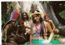 Trilha dos Seres Encantados: uma viagem ao imaginário amazônico