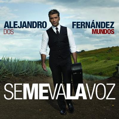 Alejandro fernandez se me va la voz for Alejandro fernandez en el jardin lyrics