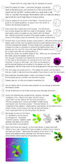 step-step instructions of the flower tutorial in png format