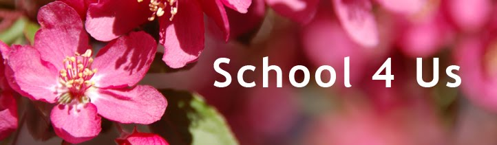 School 4 Us