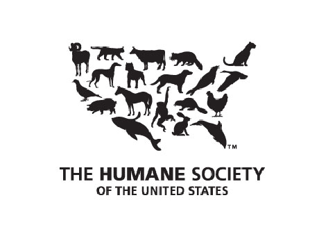 katiebug: The Humane Society Vs. The Pet Store