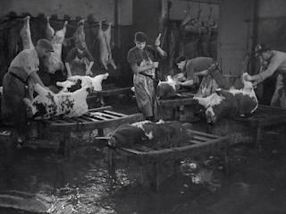 Le Sang des Bêtes - Georges Franju