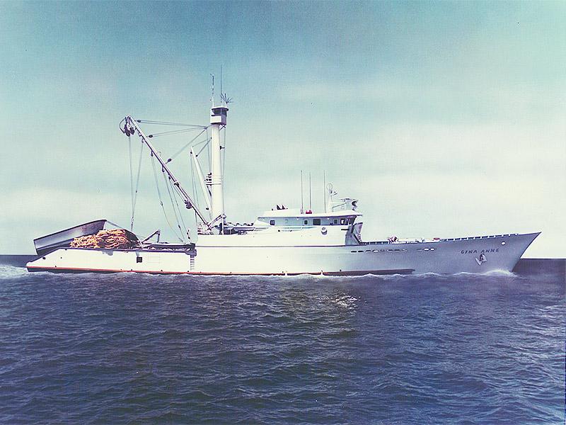 Um Corisco Na Calif Rnia Log Tuna Fishing San Diego