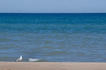 Ludington Beach © Cornelia Schaible