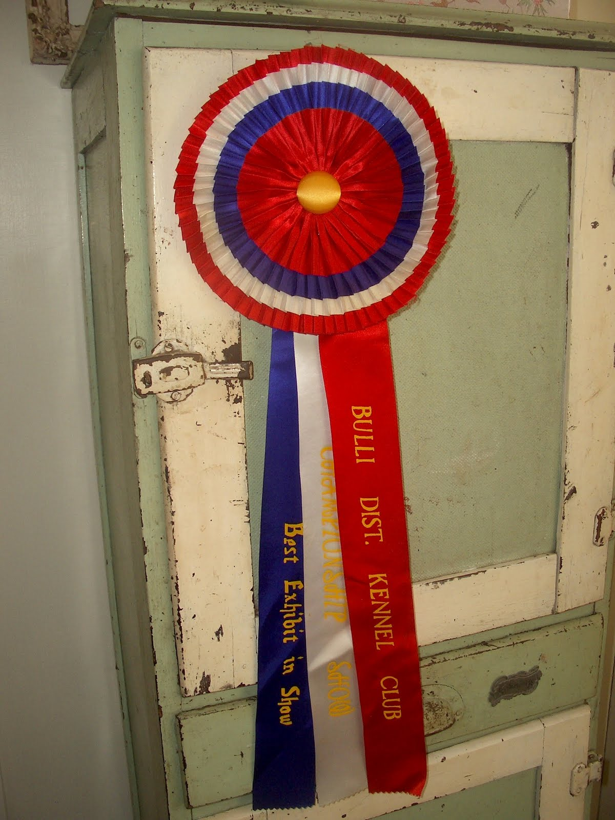 A Treasured Past: Queanbeyan Swap Meet '10 Part 4: Dog Show Ribbons