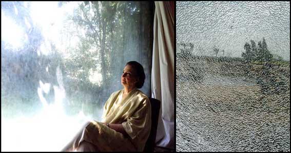 en ventanales sobre naturaleza