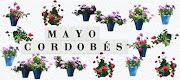 Mayo es Especial