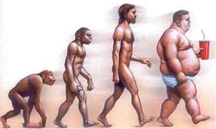 imágenes evolutivas