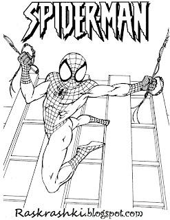 раскрашки для детей spider man