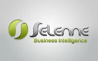 Selenne Business Intelligence