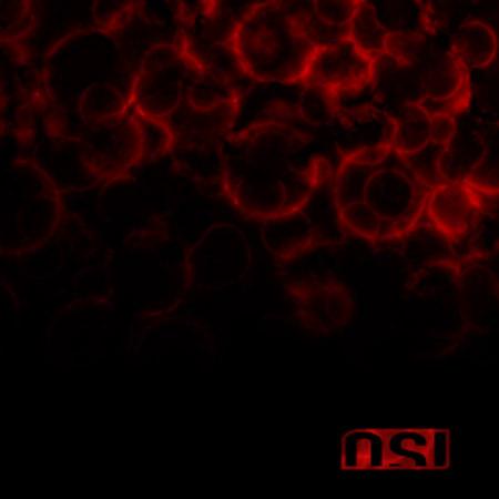[osi-blood.jpg]