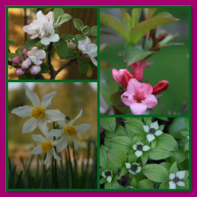 Spring blossom mosaic