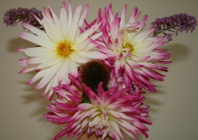 Dahlia puppy flower arrangement