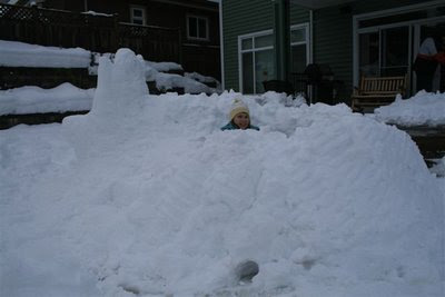 Snow fort