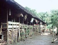 Dayak Village