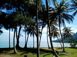 Beach (photograph)