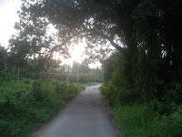 nyo condong (dulu)