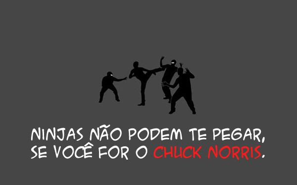 imagens para morrer de rir kk !! Funny_facts_about_ninjas_01