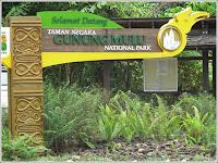Taman Negara National Park Malaysia