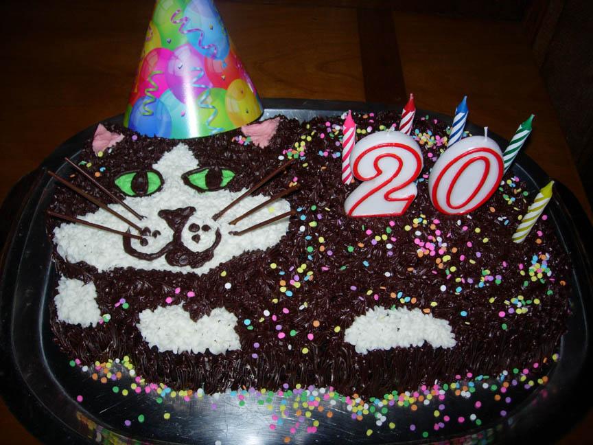 Ronnas Blog Dominos Birthday Cake
