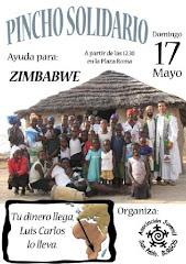 PINCHO SOLIDARIO (Ayuda para ZIMBAWE)
