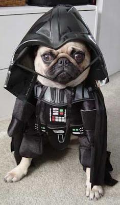 Darth Vader EXCLUSIVE Darth-Vader-everywhere-06