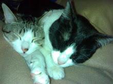 Ruka e Mia