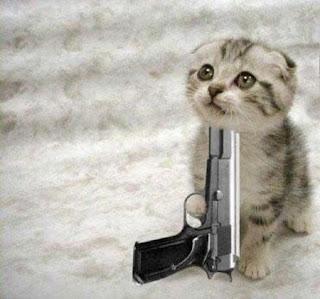 kitten_die.jpg