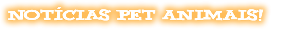 Notícias Pet Animais!!!