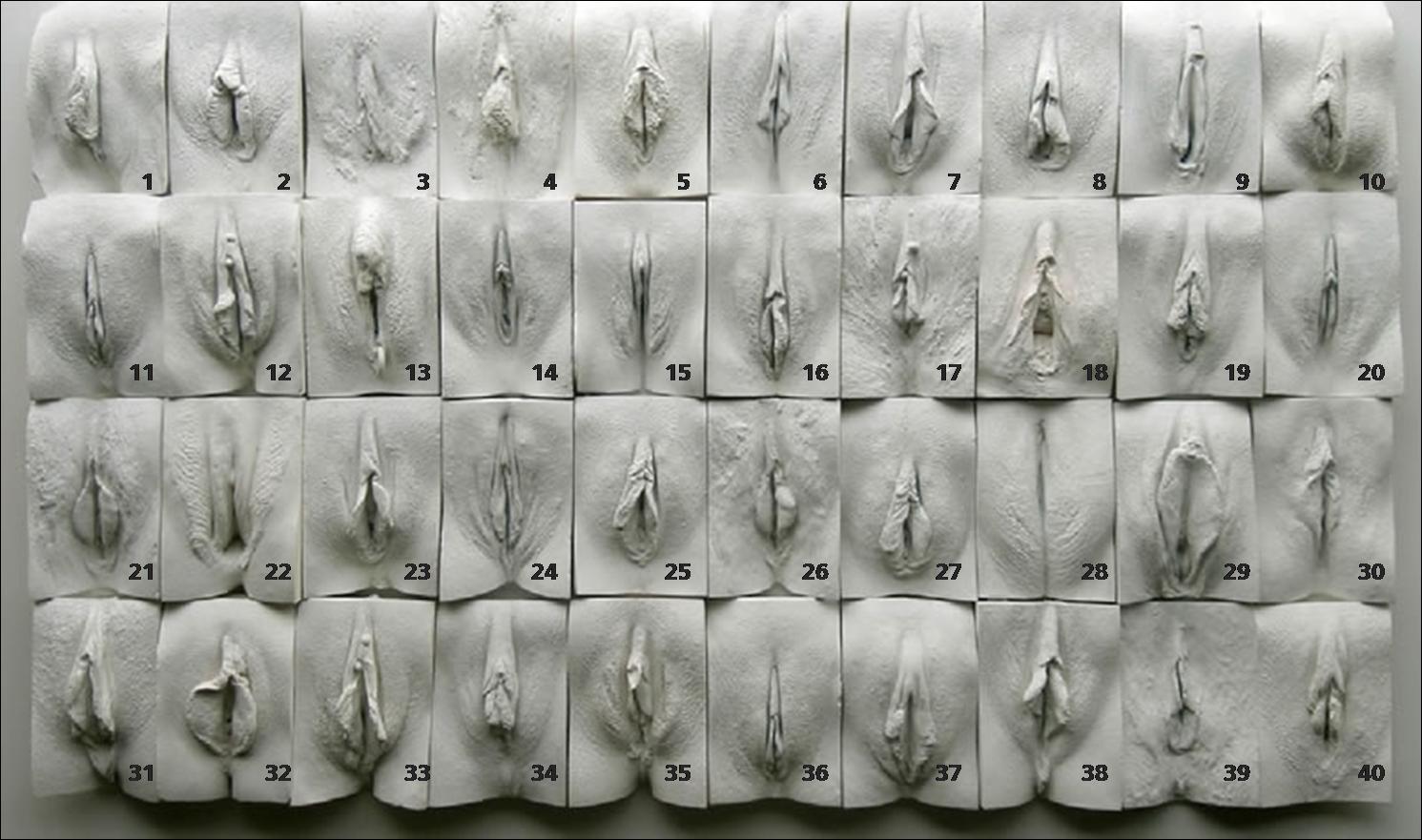 Статейка, автору виды мужских писек жгут Огромное